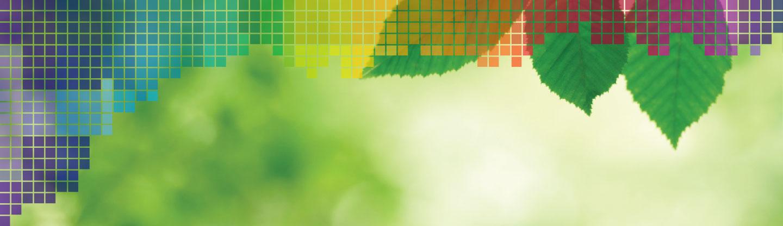 slide-green2